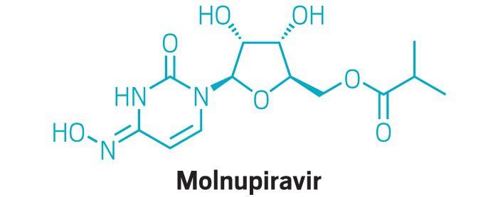 """默沙东研发的口服抗病毒药物 Molnupiravir能治疗新冠病毒以及变体:伽马变体、德尔塔变体及""""缪MU"""""""